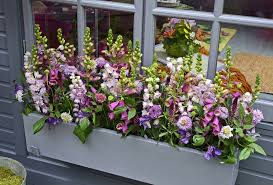 Window Boxes Planters by How Window Box Planters Can Add Spring Color To Your Home U0027s