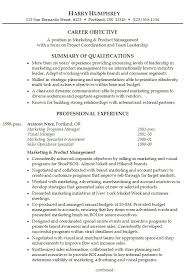How To Write Professional Summary For Resume Executive Summary Example Resume The 25 Best Executive Resume