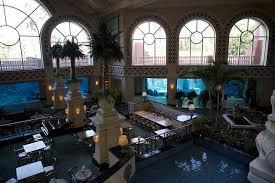 photos of kid friendly attraction atlantis hotel aquarium