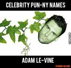 Adam Levine Meme - adam levine