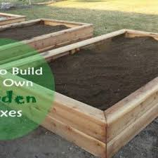 Box Gardening Ideas A Complete How To Guide For Building Your Own Garden Boxes