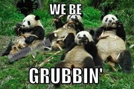 Funny Panda Memes - panda brunch