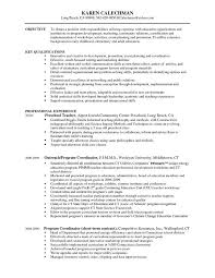 resume format for team leader 12 useful materials for production
