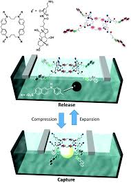 solid surface vs liquid surface nanoarchitectonics molecular