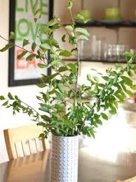 Large Vase With Twigs Craftionary