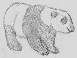 cool sketches to draw of animals animals drawings in pencil easy