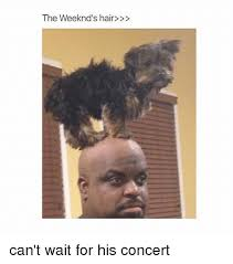 The Weeknd Hair Meme - the weeknd s hair can t wait for his concert the weeknd meme on