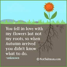 Flower Love Quotes by 7 Realistic Love Quotes Karen Salmansohn