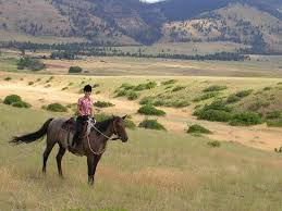 Montana scenery images Beautiful montana scenery picture of rocking z guest ranch wolf jpg