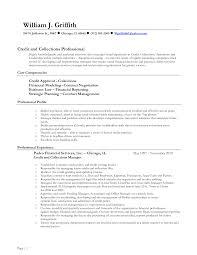 Core Competencies Resume Examples Leasing Consultant Resume Samples Resume