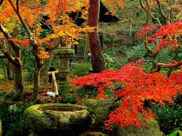 images of beautiful gardens wonderful drelis gardens four seasons