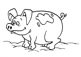 Printable Cute Animal Pig Coloring Pages For Bebo Pandco Pig Coloring Pages