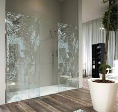 Bathroom Shower Doors Ideas Showers Creative Shower Door Creative Shower Doors Designs For