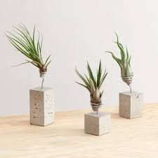 Wall Plant Holders Plant Stand Awesome Plant Holders Photo Ideas House Stand Garden