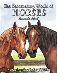 amazon big book horses color dover nature coloring