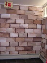 Cinder Block Decorating Ideas by Decorative Decorating Ideas For Cinder Block Walls Painting Of