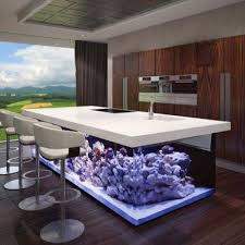 54 best the best collection of home fish tank ideas images on