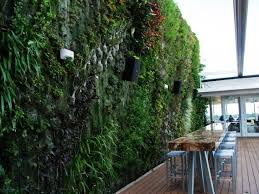 Vertical Gardens Miami - vertical gardening lecture u2013 u0027transforming walls with nature