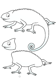 mixed up chameleon coloring page
