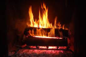 fireplaces provide benefits far beyond warmth roadkill crossing