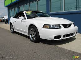2004 white mustang convertible 2004 oxford white ford mustang cobra convertible 74973810 photo