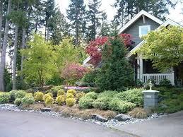small trees for landscaping garden design