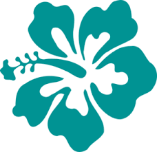 teal flowers hibiscus teal green clip at clker vector clip