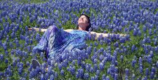 a women taking a nap in a field of texas bluebonnets in a purple