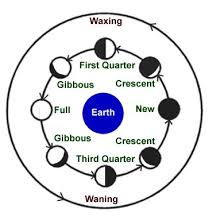 science phases of the moon
