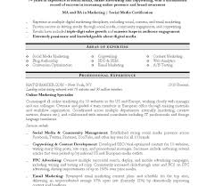 free resume template docx to pdf it professional resume template doc templates free download