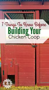 7 things to know before building a chicken coop