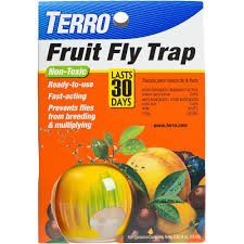 What Are The Small Flies In My Bathroom Terro Fruit Fly Trap 0 50 Fl Oz Walmart Com