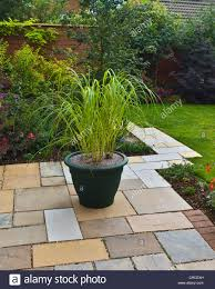 small garden patio with large pot of ornamental grasses stock