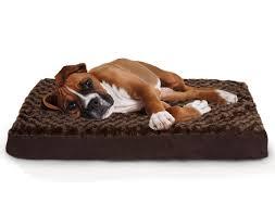 Foam Dog Bed Furniture Black Velvet Costco Dog Beds With Memory Foam For Pet
