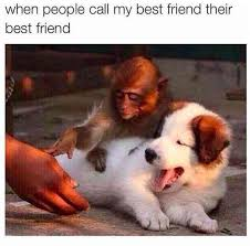 Memes About Best Friends - 30 best friend memes and quotes for friendship day 2017 to share