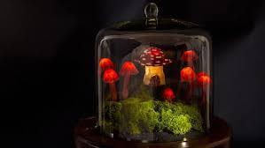 diy miniature garden terrarium enchanted lights