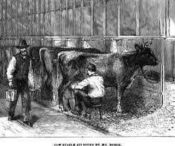feed or foes livestock can be trained to eat the nuisance plants horse stories by thomas w knox