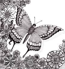 detailed butterfly coloring pages for adults adult coloring page summer butterfly 14 coloring pages for adults