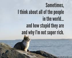 Rich Cat Meme - sometimes i think cat meme cat planet cat planet