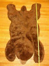 kids bear rug ebay