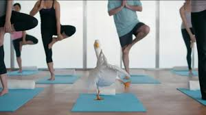 aflac commercial actress in gym aflac tv commercial duck does yoga ispot tv