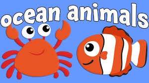 ocean animals learning ocean animals for kids youtube