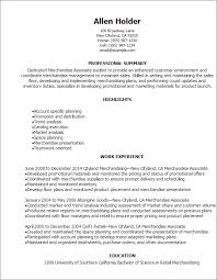 Resume Sample For Merchandiser Sample Format Of Resume In Ms Word Dissertation Conclusion