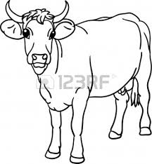 cow clipart black and white many interesting cliparts