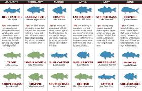 2017 South Carolina Fishing Forecast Game U0026 Fish
