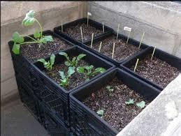 rectangular plastic garden vegetable split pot large planter box
