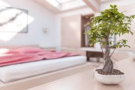 how to decorate a bedroom feng shui style 6 steps