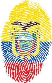 Cool Brazil Flag Interesting Facts About Ecuador Fun Facts Ecuador
