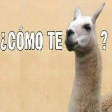Spanish Memes Funny - funny spanish memes 20 pics funny memes