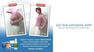 Jamu Pelangsing Merit jual obat pelangsing alami 085769045251 call sms wa jual smart